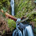 Pacific Crest Falls.- Columbia River Gorge National Scenic Area
