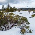 Looking west to Mount Hood from Fivemile Butte.- Best Winter Adventure Destinations