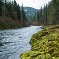 The Clackamas River.- Oregon Fall Adventures