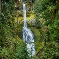 Clackamas River Trail: Pup Creek Falls.- Oregon's 75 Best Day Hikes