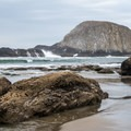 Low tide at Seal Rock.- Seal Rock State Recreation Site