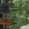 At the junction of the Lily Pad Lake Trail.- Best Hikes in the Colorado Front Range