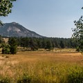 Views from Moraine Park Campground in Rocky Mountain National Park.- Guide to Camping in Colorado