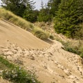 The trail around Hall Lake.- Guide to the Oregon Dunes National Recreation Area