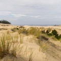 Open views of the dunes from the Hall and Shuttpelz Lake Trail.- 3-Day Itinerary For Florence, Oregon
