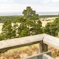The dunes extend for a mile to the beach.- Oregon Dunes Restoration
