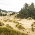 The Oregon Dunes Day-Use Area is one of the best places to see the Oregon Dunes.- Oregon Dunes Restoration