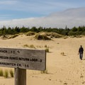 Junction for the full Oregon Dunes loop trail.- The People's Coast
