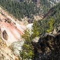 On the rim of Grand Canyon of the Yellowstone near Ribbon Lake Trail.- Yellowstone National Park