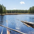 Ribbon Lake.- 6 Best Backpacking Trips in Yellowstone National Park