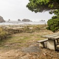 Picnic area at Devils Kitchen.- Sanderling: A Winter Migration Visitor