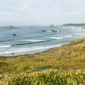 Looking north toward Blacklock Point from Cape Blanco.- Marvel at the Diversity of Western Marine Life