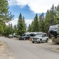 Fishing Bridge RV Park.- A Guide to Campgrounds in Yellowstone National Park