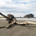 Near the mouth of the Sixes River the trail gives way to gravel and sand.- 3-Day Itinerary for Bandon, Oregon