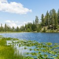 Lost Lake.- A 3-Day Itinerary for Yellowstone National Park