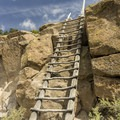 A ladder leads to the top of the mesa at Tsankawi Ruins.- Six Must Do Hikes Around Santa Fe + Taos
