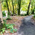 Chetco River access at Alfred Loeb State Park campground.- Underused Gems of the Oregon Coast