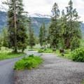 Pebble Creek loop road.- A Guide to Campgrounds in Yellowstone National Park