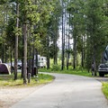 Baker's Hole Campground.- A Guide to Campgrounds in Yellowstone National Park