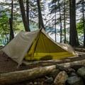 Backcountry camping at Bowman Lake.- Glacier National Park