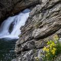 Running Eagle Falls.- Glacier National Park
