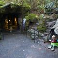 Pacific Northwest exhibit area at the Oregon Zoo.- Washington Park