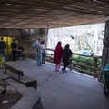Primate enclosure and viewing area at the Oregon Zoo.- Washington Park