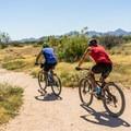 Bikers on the Pemberton Loop Trail in McDowell Mountain Regional Park.- 10 Favorite Autumn Adventures in Arizona