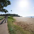 Ka'anapali Beachwalk at the Royal Lahaina Resort.- 15 Dog-friendly Coastal Adventures That Should Be On Your Bucket List