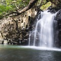 Lower Falls on Ho'olawa Stream.- Hawaii's Best Day Hikes