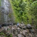 Mānoa Falls during a dry period.- O'ahu's 16 Best Hikes