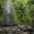 Mānoa Falls during a dry period.- A 3-Day Itinerary to the Best of Honolulu