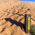 One of the areas for foot traffic only.- Coral Pink Sand Dunes State Park