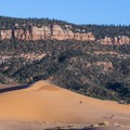 The  scale of the dunes is impressive.- Coral Pink Sand Dunes State Park
