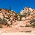 This Many Pools Trail is mostly a climb up slickrock ledges.- 4 Tips to Help You Prepare for Zion National Park