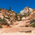 Many Pools Hike is a freestyle slickrock trail.- A Complete Guide to Hiking in Zion National Park