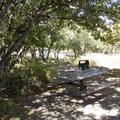 A typical site at South Rim Campground at Black Canyon of the Gunnison.- Black Canyon of the Gunnison National Park