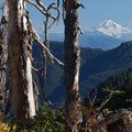 Mount Baker in view from the Golden Ears Summit Trail.- Best Day Hikes near Vancouver, B.C.