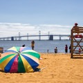 Views of the Bay Bridge from Sandy Point State Park. - 10 Must-see Beaches Near the Chesapeake Bay