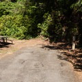 A typical site in Umpqua Lighthouse State Park Campground.- A Guide to Camping on the Central Oregon Coast