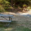 A typical site at Humbug Mountain State Park Campground.- Underused Gems of the Oregon Coast