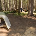 Choice campsite near the creek at Thielsen Forest Campground.- Camping Near Crater Lake National Park