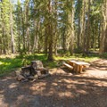 Each campsite at Thielsen Forest Campground has a sturdy table, a fire pit, and an oven.- Camping Near Crater Lake National Park