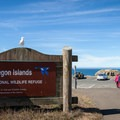 Kronenberg County Park is a viewing area for Coquille Point and the surrounding islands, all included in the Oregon Islands National Wildlife Refuge. - 10 Best Locations for Spotting Wildlife on the Oregon Coast