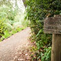 John Dellenbeck Trail.- Navigating the Oregon Coast Trail