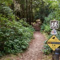 The popular trail to Threemile Lake leaves from a day use area adjacent to Tahkenitch Campground.- A Guide to Camping on the Central Oregon Coast