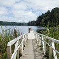The fishing dock on Tahkenitch Lake.- Oregon's 60 Best Lakes for Summer