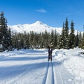 Perhaps your interest is in cross-country skiing?- 12 Months of Adventure: January - Snowventures