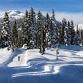 Mainline Trail, Callaghan Country.- Best Winter Adventure Destinations