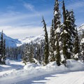 Meadows and Solitude Loops, Callaghan Country in Canada.- 5 Ways to Stay Active + Outside in a Wintertime Limbo